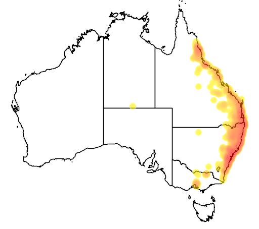 distribution map showing range of Litoria fallax in Australia