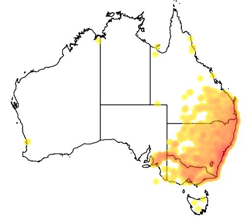 distribution map showing range of Litoria peroni in Australia