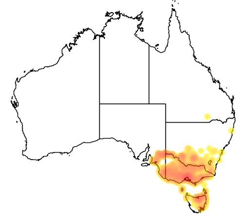 distribution map showing range of Litoria raniformis in Australia