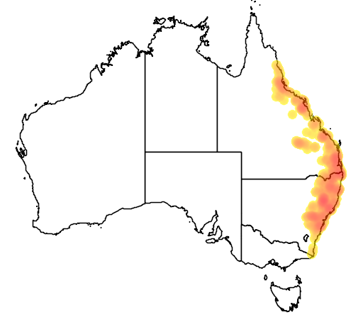 distribution map showing range of Litoria wilcoxi in Australia