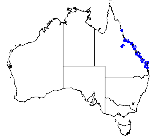 distribution map showing range of Livistona decipiens in Australia