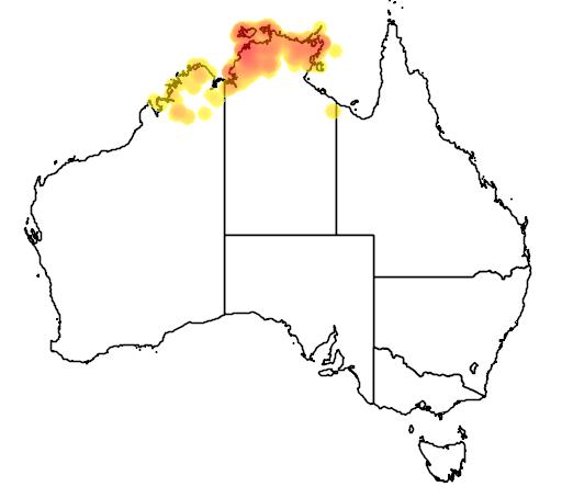 distribution map showing range of Livistona humilis in Australia