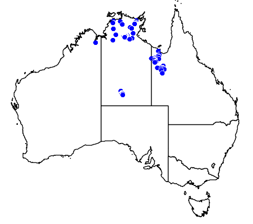 distribution map showing range of Livistona mariae in Australia