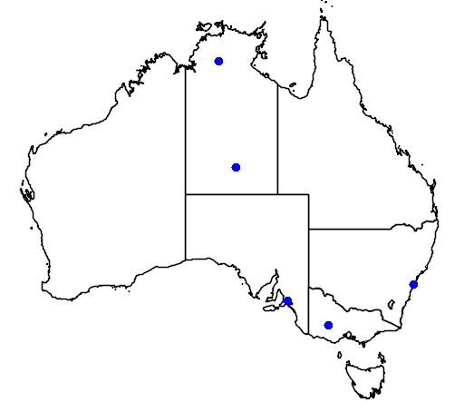 distribution map showing range of Lonchura oryzivora in Australia