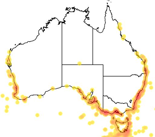 distribution map showing range of Macronectes giganteus in Australia