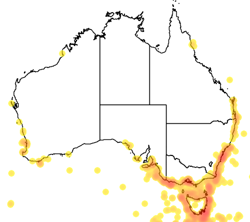 distribution map showing range of Macronectes halli in Australia