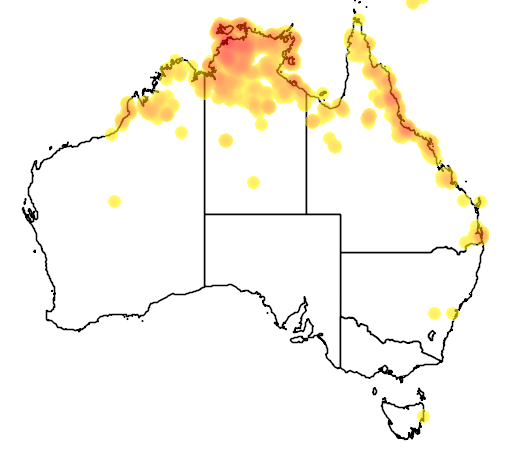 distribution map showing range of Macropus agilis in Australia
