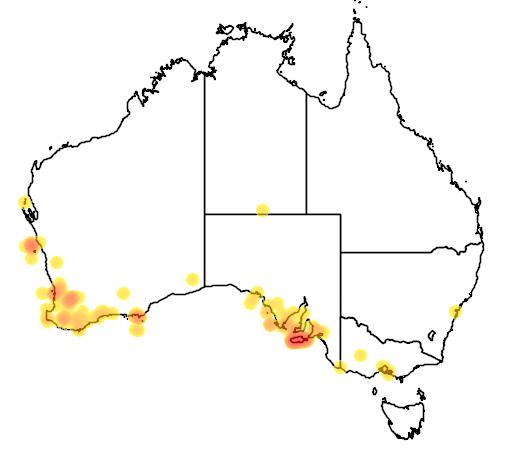 distribution map showing range of Macropus eugenii in Australia