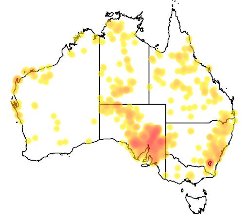 distribution map showing range of Macropus robustus in Australia