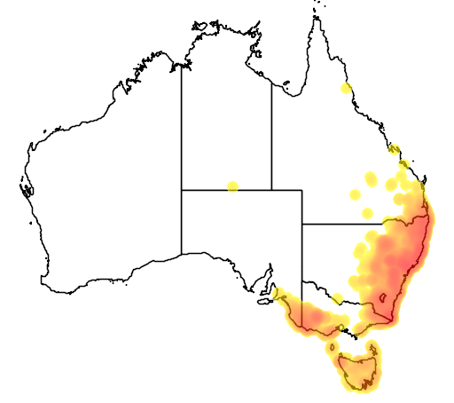 distribution map showing range of Macropus rufogriseus in Australia