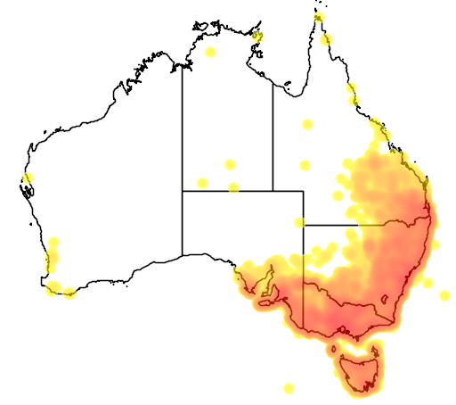 distribution map showing range of Malurus cyaneus in Australia
