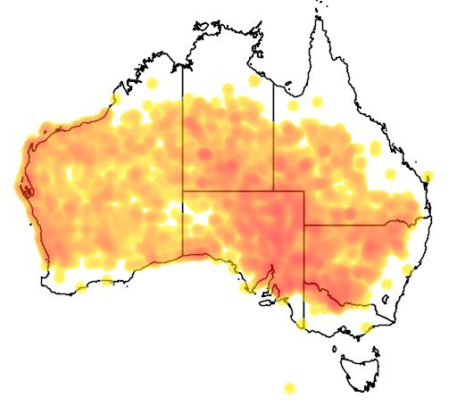 distribution map showing range of Malurus leucopterus in Australia