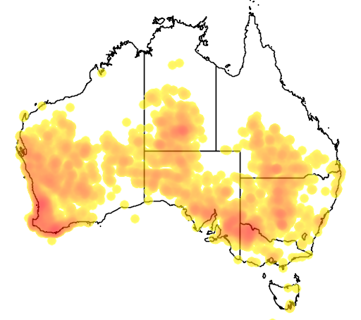 distribution map showing range of Malurus splendens in Australia
