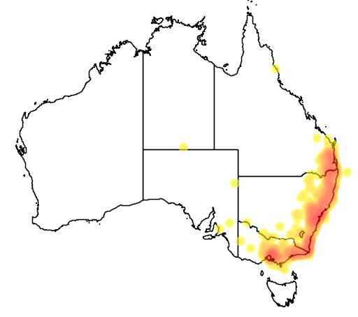 distribution map showing range of Manorina melanophrys in Australia