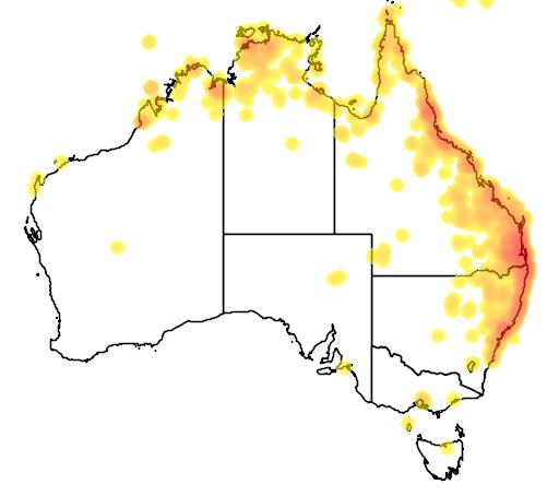 distribution map showing range of Megalurus timoriensis in Australia