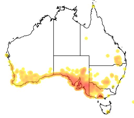 distribution map showing range of Melaleuca lanceolata in Australia
