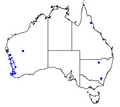 distribution map showing range of Melaleuca trichophylla in Australia