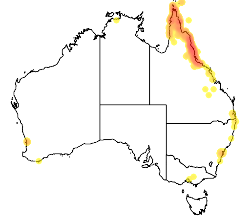 distribution map showing range of Meliphaga notata in Australia