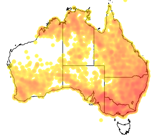 distribution map showing range of Microeca fascinans in Australia