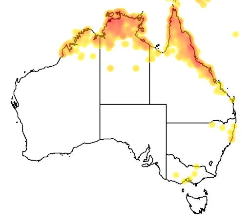 distribution map showing range of Microeca flavigaster in Australia
