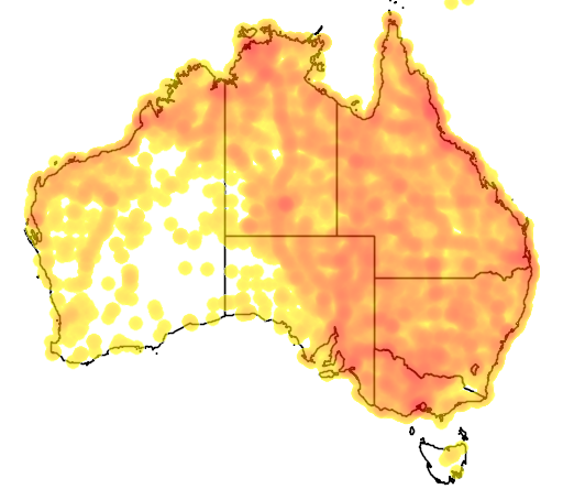 distribution map showing range of Milvus migrans in Australia