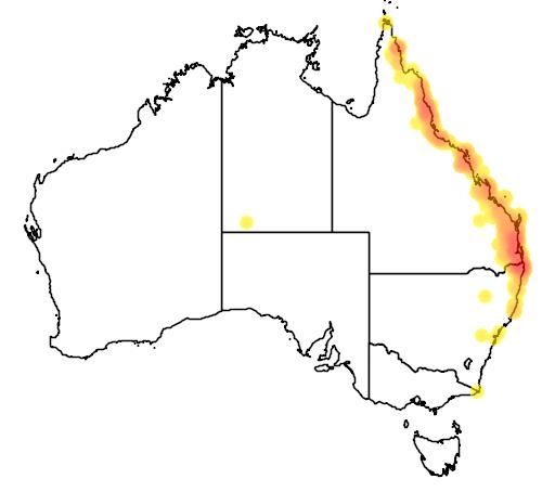 distribution map showing range of Monarcha leucotis in Australia