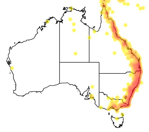 distribution map showing range of Monarcha trivirgatus in Australia