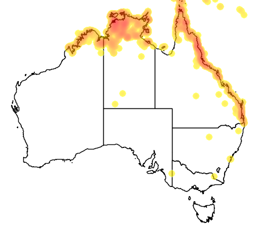 distribution map showing range of Myiagra alecto in Australia