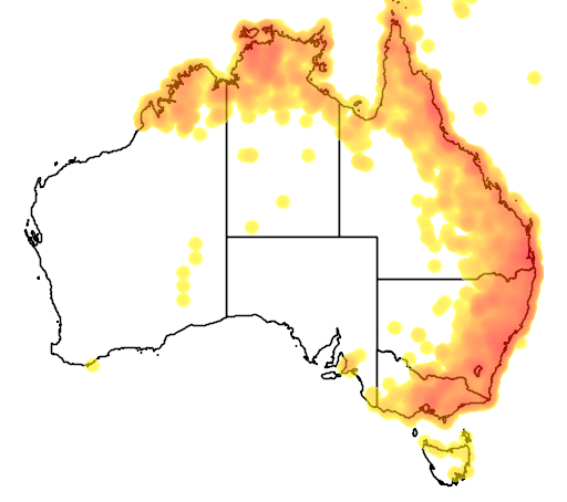 distribution map showing range of Myiagra rubecula in Australia