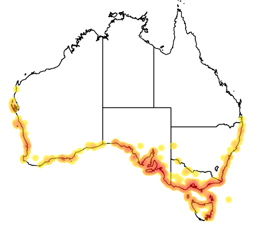 distribution map showing range of Myoporum insulare in Australia