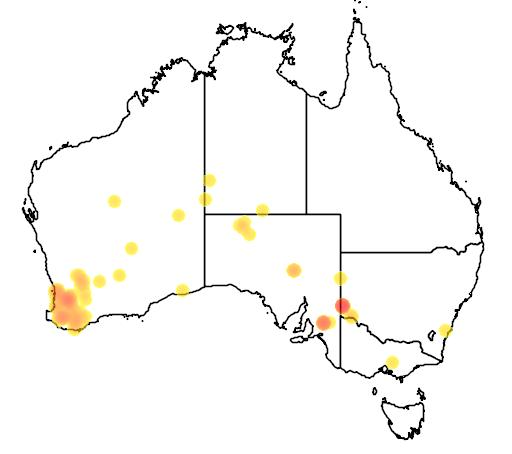 distribution map showing range of Myrmecobius fasciatus in Australia