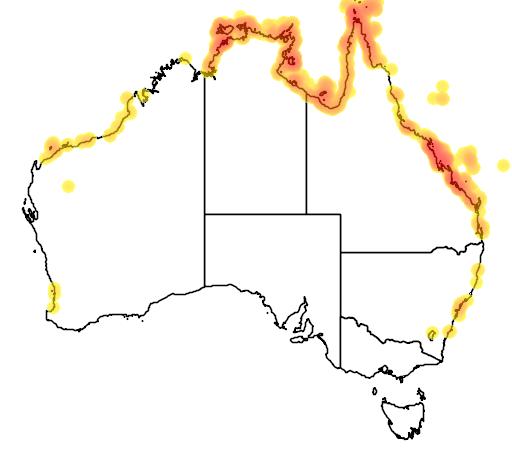 distribution map showing range of Natator depressus in Australia