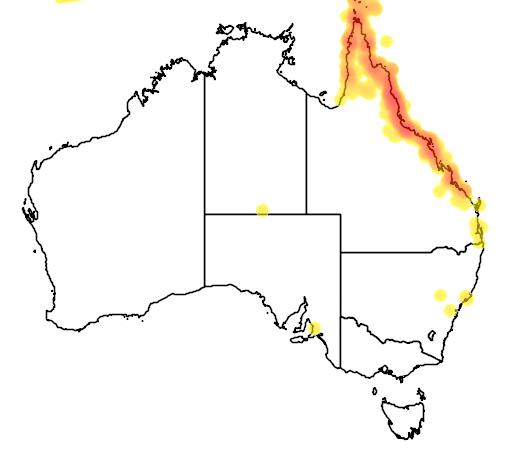 distribution map showing range of Nectarinia jugularis in Australia