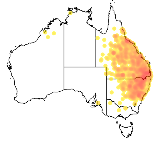 distribution map showing range of Neochmia modesta in Australia