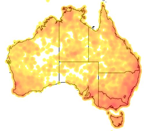 distribution map showing range of Ninox novaeseelandiae in Australia