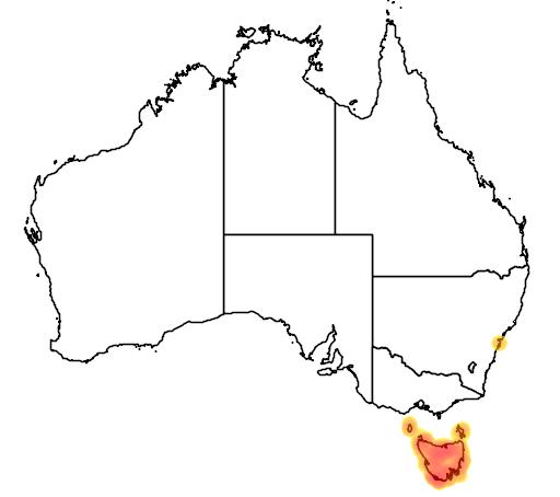 distribution map showing range of Niveoscincus pretiosus in Australia