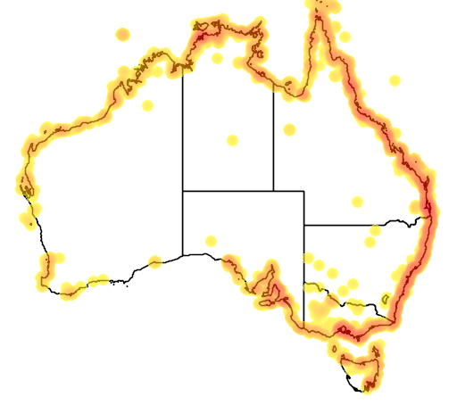 distribution map showing range of Numenius madagascariensis in Australia