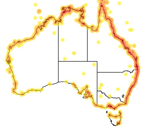 distribution map showing range of Numenius phaeopus in Australia