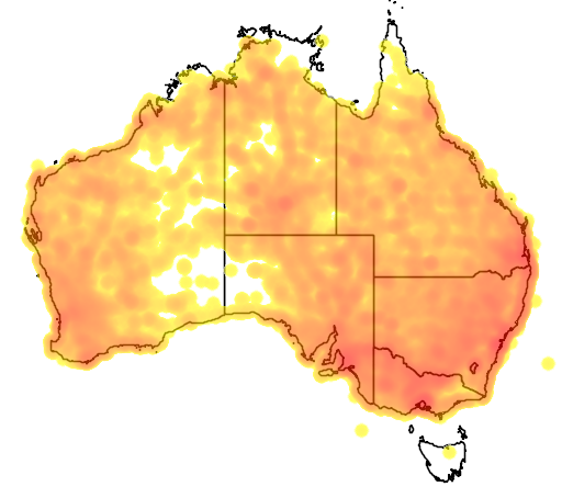 distribution map showing range of Ocyphaps lophotes in Australia