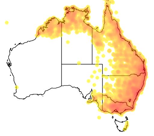 distribution map showing range of Oriolus sagittatus in Australia