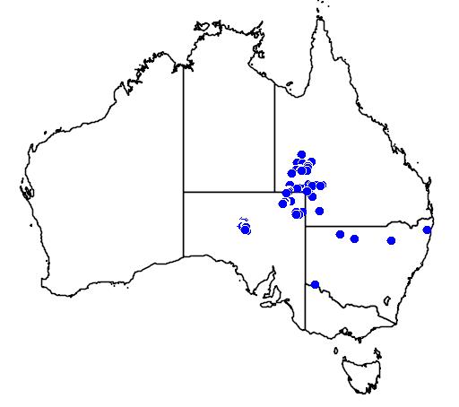 distribution map showing range of Oxyuranus microlepidotus in Australia