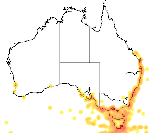 distribution map showing range of Pachyptila turtur in Australia