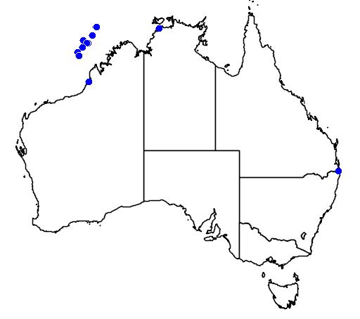 distribution map showing range of Papasula abbotti in Australia