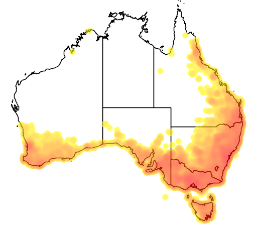 distribution map showing range of Pardalotus punctatus in Australia