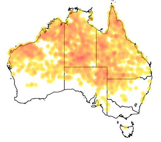 distribution map showing range of Pardalotus rubricatus in Australia