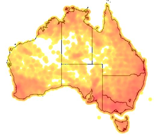 distribution map showing range of Pardalotus striatus in Australia