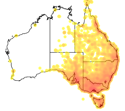 distribution map showing range of Passer domesticus in Australia