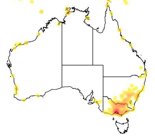 distribution map showing range of Passer montanus in Australia