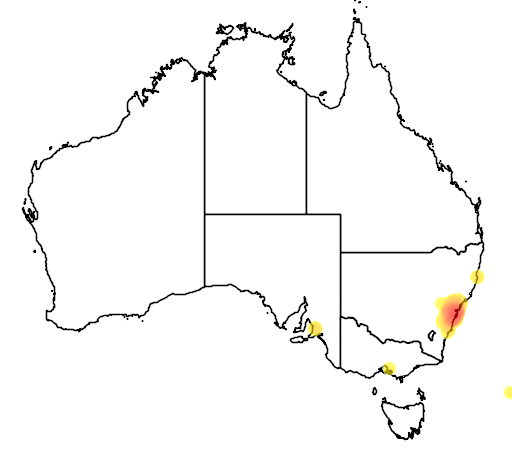 distribution map showing range of Persoonia pinifolia in Australia