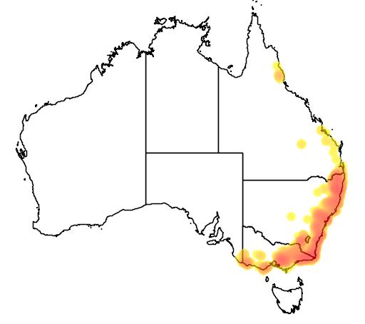 distribution map showing range of Petaurus australis in Australia